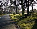 Path, Ward Park - geograph.org.uk - 1706436.jpg