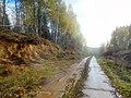 Permskiy r-n, Permskiy kray, Russia - panoramio (765).jpg