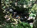 Perto da cascata perto de Pitões das Júnias 2.JPG