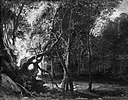 Peter Paul Rubens (Kopie nach) - Waldlandschaft - 48 - Bavarian State Painting Collections.jpg