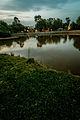 PikiWiki Israel 42156 A new day at Park Hayarkon.jpg