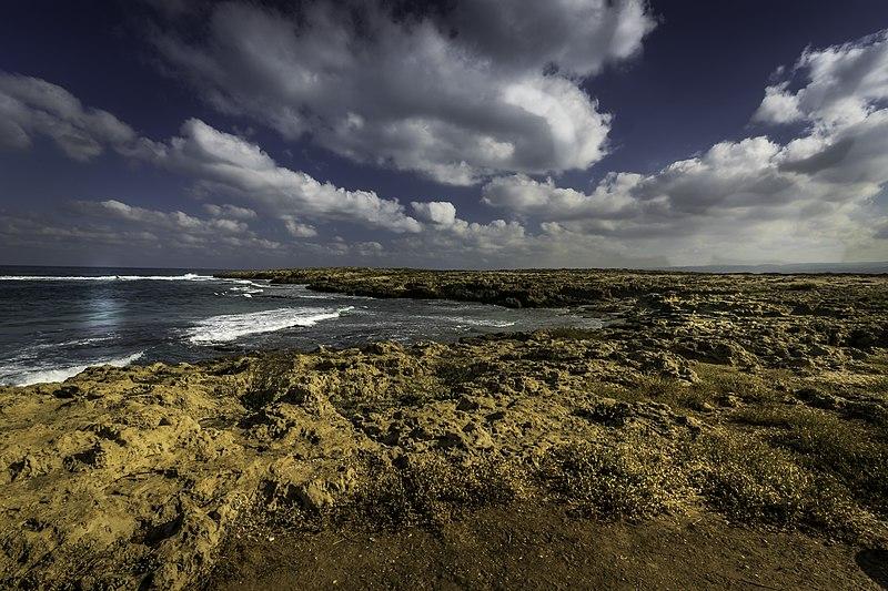 שמורת חוף הבונים