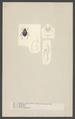 Pimelia - Print - Iconographia Zoologica - Special Collections University of Amsterdam - UBAINV0274 001 08 0041.tif
