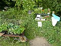 Plants and produce for sale - geograph.org.uk - 812831.jpg
