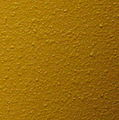 "Plaster wall in ""baby mustard"" color - 20070925.jpg"