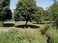 Pleasant parkland opposite Timberhonger Lane - geograph.org.uk - 203885.jpg