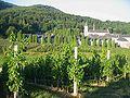 Pleterje-Samostan4.jpg