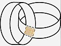 Plumbing disk bundles.jpg