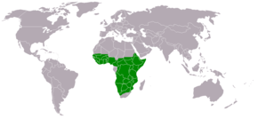 Description de l'image Polemaetus bellicosus distribution map.png.