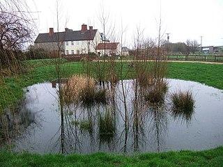 Petherton Park