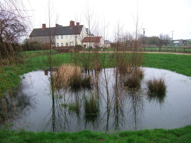 Pond at Manor House Farm - geograph.org.uk - 340993