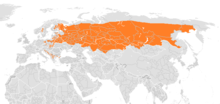 Present distribution of the gray wolf subspecies - Eurasian wolf (Canis lupus lupus) updated.png