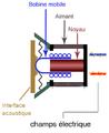 Principe hydrophone électromagnétique.png