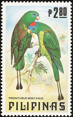 Prioniturus montanus 1984 stamp of the Philippines.jpg