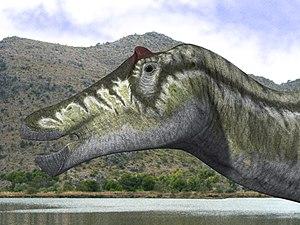 Prosaurolophus - Three-dimensional reconstruction of a P. maximus head