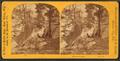 Prospect Point, by Bennett, H. H. (Henry Hamilton), 1843-1908.png