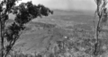 Queensland State Archives 369 Looking from Bald Knob across Diamond Valley towards Mooloolah c 1931.png
