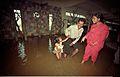 Quicksand - Dynamotion Hall - Science City - Calcutta 1997 465.JPG