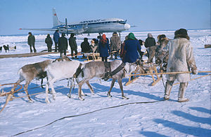 RIAN archive 501303 Aircraft delivered cargo for reindeer herders.jpg