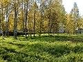Rabochiy Poselok, Kubinka, Moskovskaya oblast', Russia - panoramio (3).jpg