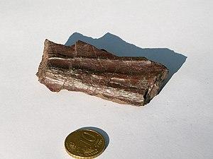 Radiolarite - Radiolarite (Jurassic) from the Alps.