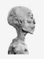 Ramses IV mummy head.png