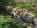 Rapids on the Tullybranigan River - geograph.org.uk - 1472321.jpg