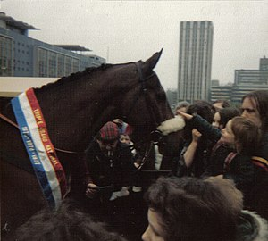 Red Rum - Red Rum at Castle Park, Bristol 1980