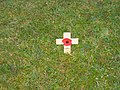 Remembrance Poppy near Hadrians' Wall Footpath - geograph.org.uk - 1583849.jpg