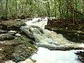 Reserva ecológica Lajes - panoramio (2).jpg