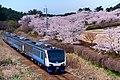 Resort Shirakami the Aoike train set arriving at Akita-Shirakami Station.jpg