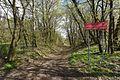 Rezerwat przyrody Skarpa Ursynowska 2017 01.jpg