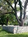 Rich Neck Manor, cemetery (21442000079).jpg