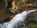 Ricketts Glen State Park Onondaga Falls 3.jpg