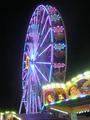 Riesenrad Volksfest Ulm Nachtbild20072015.png
