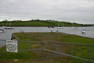Ringhaddy Human settlement in Northern Ireland