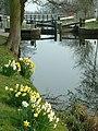 Ripon Canal - geograph.org.uk - 85957.jpg