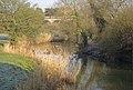 River Avon, Wolston - geograph.org.uk - 691352.jpg