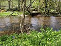 River Avon - geograph.org.uk - 1294177.jpg