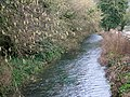 River Cerne, Forston Grange - geograph.org.uk - 1157306.jpg