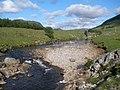 River Spey near Sherramore - geograph.org.uk - 1346721.jpg