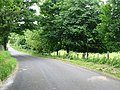 Road to Acrise Place in Limekiln Plantation - geograph.org.uk - 861650.jpg