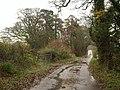 Road to Staple Park Farm - geograph.org.uk - 1616917.jpg