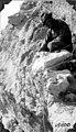 Robert Thorne at Panochtus skeleton (3526478494).jpg