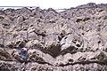 Rock climbing in Tbilisi Botanical Garden 02.jpg
