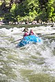 Rogue River (17607247315).jpg