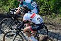 Ronde van Vlaanderen 2015 - Oude Kwaremont (17054801835).jpg