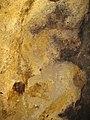 Rosia Montana Roman Gold Mines 2011 - Wall Detail-7.jpg