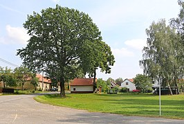 Rudná (Svitavy), common.jpg