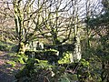 Ruin alongside track to Chwarel Terfyn - geograph.org.uk - 349797.jpg